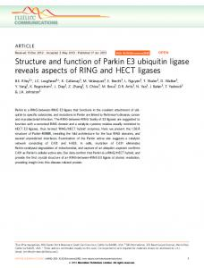 Structure and function of Parkin E3 ubiquitin ligase reveals ... - Nature