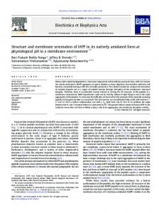 Structure and membrane orientation of IAPP in its natively ... - Core