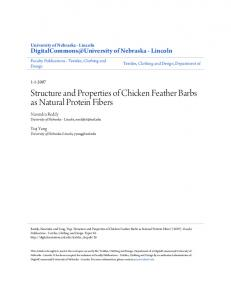 Structure and Properties of Chicken Feather Barbs