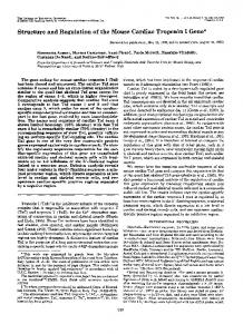 Structure and Regulation of the Mouse Cardiac Troponin I Gene*