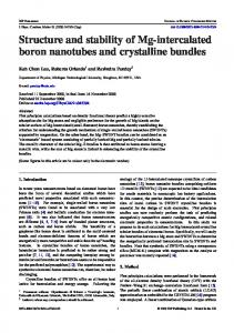 Structure and stability of Mg-intercalated boron