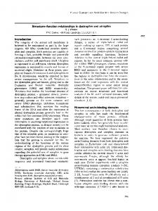 Structure-function relationships in dystrophin and ... - Semantic Scholar