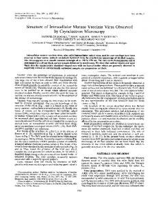 Structure of Intracellular Mature Vaccinia Virus ... - Journal of Virology