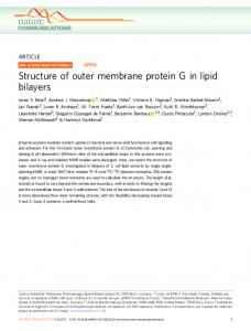 Structure of outer membrane protein G in lipid bilayers - MPG.PuRe