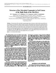 Structure of the Microbial Community in Soil Catena of ...