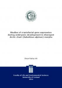 Studies of craniofacial gene expression during