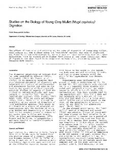 Studies on the biology of young grey mullet (Mugil cephalus) digestion