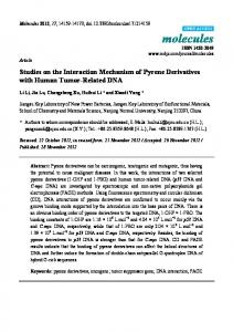 Studies on the Interaction Mechanism of Pyrene