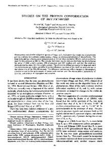 STUDIES ON THE PROTEIN CONFORMATION OF PHYTOCHROME