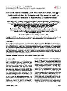 Study of Functionalized Gold Nanoparticles with Anti ...