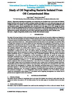 Study of Oil Degrading Bacteria Isolated From Oil Contaminated Sites