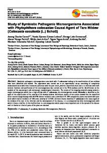 Study of Symbiotic Pathogenic Microorganisms Associated with ...