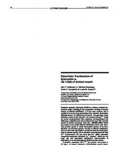 Subcellular fractionation of dystrophin to the triads of skeletal muscle