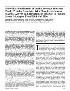 Subcellular Localization of Insulin Receptor Substrate ... - Diabetes