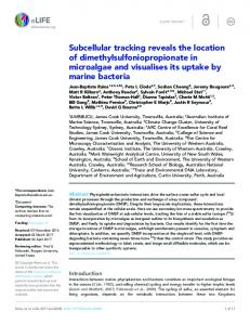 Subcellular tracking reveals the location of ... - Semantic Scholar