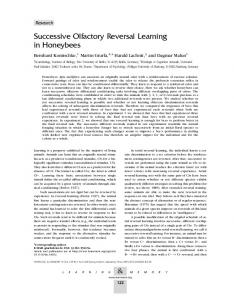 Successive Olfactory Reversal Learning in