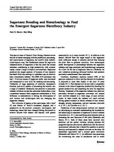 Sugarcane Breeding and Biotechnology to Feed the ... - Springer Link