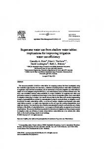 Sugarcane water use from shallow water tables