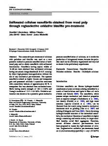 Sulfonated cellulose nanofibrils obtained from wood ...
