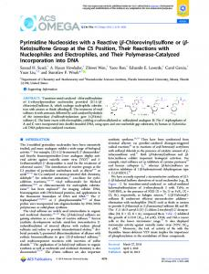 sulfone or - ACS Publications - American Chemical Society