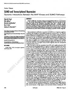 SUMO and Transcriptional Repression: Dynamic Interactions Between ...