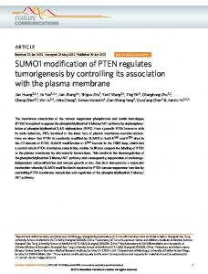 SUMO1 modification of PTEN regulates tumorigenesis by ... - Nature