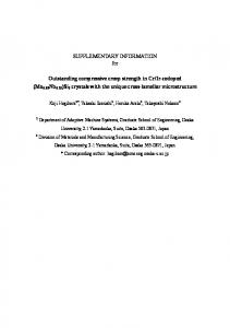 SUPPLEMENTARY INFORMATION for Outstanding