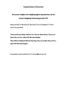 Supplementary Information Structural insights into ...