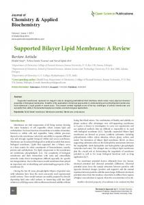 Supported Bilayer Lipid Membrane