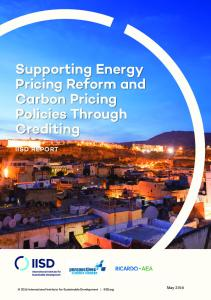 Supporting Energy Pricing Reform and Carbon Pricing Policies Through
