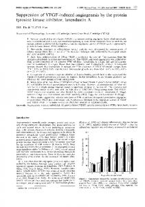 Suppression of VEGF-induced angiogenesis by the protein tyrosine ...