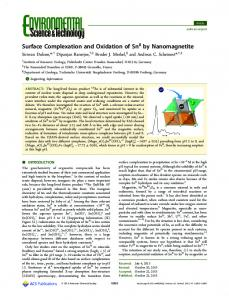 Surface Complexation and Oxidation of SnII by Nanomagnetite
