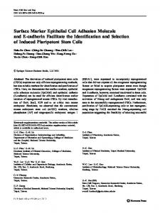 Surface Marker Epithelial Cell Adhesion Molecule and E-cadherin ...