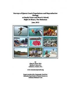 Surveys of Queen Conch Populations and ...