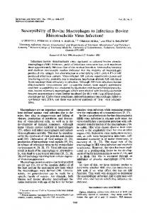 Susceptibility of Bovine Macrophages to Infectious Bovine ...