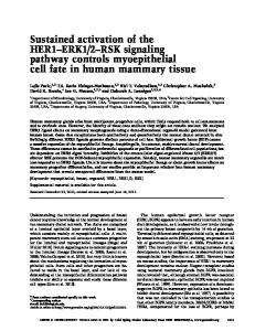 Sustained activation of the HER1–ERK1/2–RSK signaling pathway ...