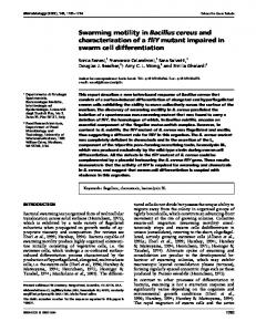 Swarming motility in Bacillus cereus and characterization ... - CiteSeerX