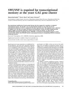 SWI/SNF is required for transcriptional memory at the ... - CiteSeerX