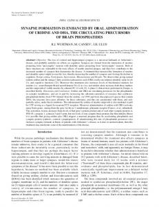 synapse formation is enhanced by oral administration ... - Springer Link
