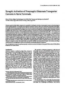 Synaptic Activation of Presynaptic Glutamate Transporter Currents in