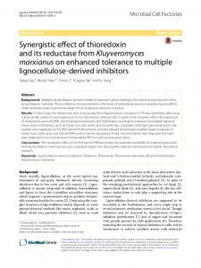 Synergistic effect of thioredoxin and its reductase
