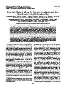 Synergistic Effects of Y2 and Y4 Receptors on Adiposity and Bone ...