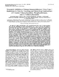 Synergistic inhibition of human immunodeficiency virus type 1