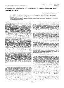 Synthesis and Expression of C1 Inhibitor by ... - Semantic Scholar