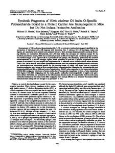 Synthetic Fragments of Vibrio cholerae O1 Inaba O-Specific ...