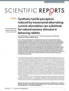 Synthetic tactile perception induced by transcranial
