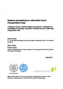 Systems perspectives on alternative future transportation fuels