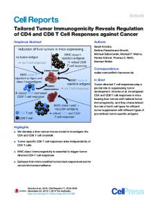 T Cell Responses against Cancer