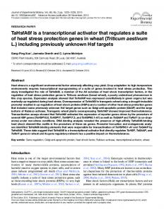 TaHsfA6f is a transcriptional activator that regulates ... - Oxford Academic