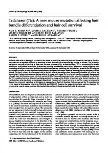 Tailchaser (Tlc): A new mouse mutation affecting hair bundle ...